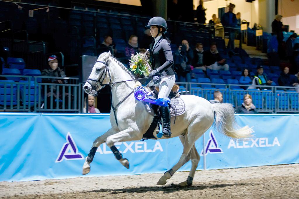 Anett Pajur - MACHO @ Tallinn International Horse Show 2016, 7.10.2016 Foto: Kylli Tedre-Gavrilov